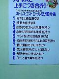 041212_diary.jpg