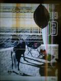 080701_diary.jpg